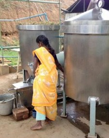 Woman in saree distilling lemongrass esential oil