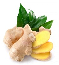 fresh ginger root in its natural state.