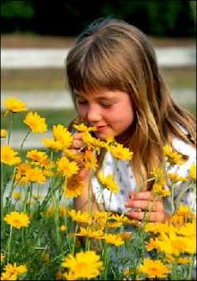 Little girl smelling flowers